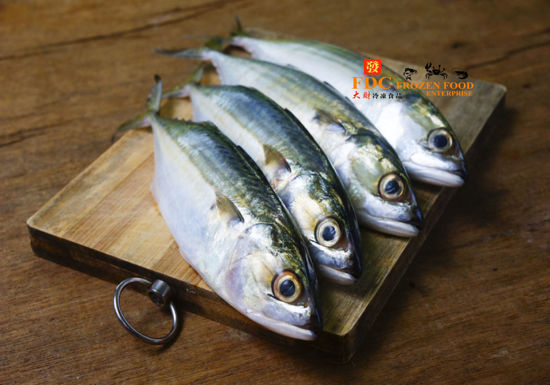 Picture of IKAN KEMBONG <br> 甘望魚 <br>  (1PKT 3ekor x 420g+-)