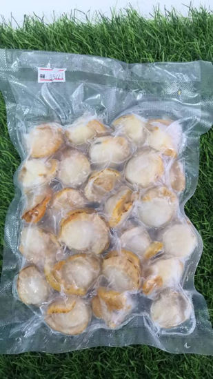 Picture of BOILED SCALLOP MEAT <br> 扇贝肉<br> (1PKT / 300g )